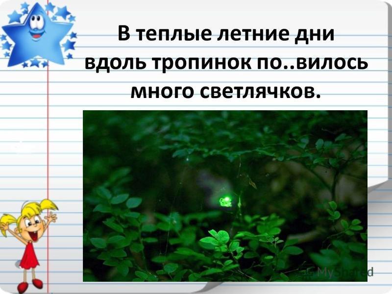 В теплые летние дни вдоль тропинок по..вилось много светлячков.