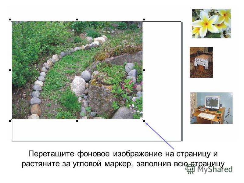 Перетащите фоновое изображение на страницу и растяните за угловой маркер, заполнив всю страницу