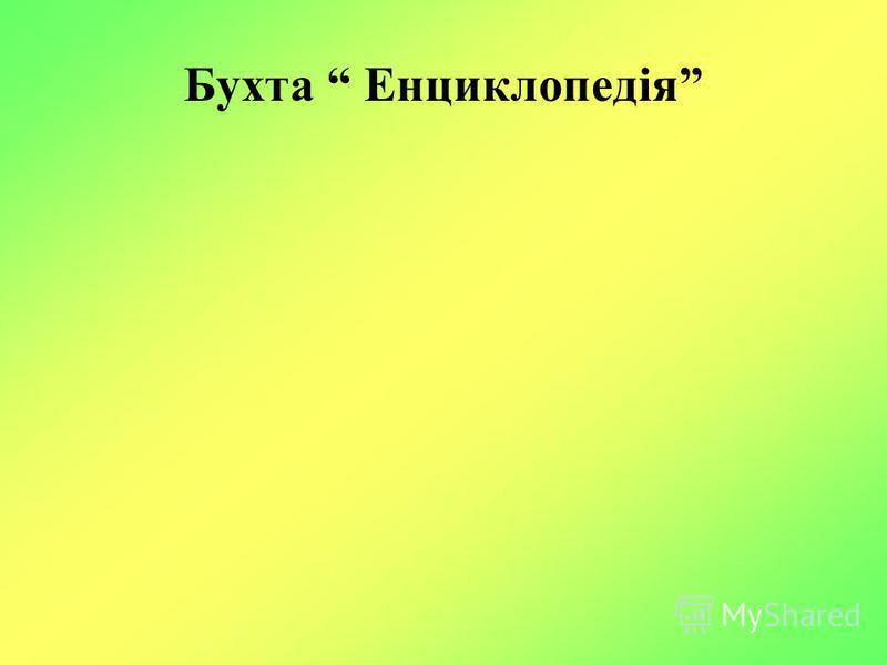 Бухта Енциклопедія