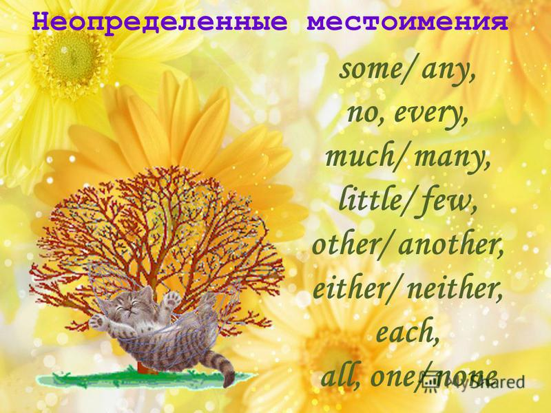 Неопределенные местоимения some/ any, no, every, much/ many, little/ few, other/ another, either/ neither, each, all, one/ none