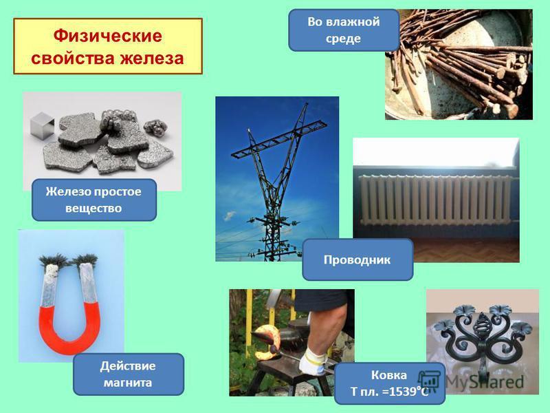 Физические свойства железа Ковка Т пл. =1539°С Во влажной среде Железо простое вещество Действие магнита Проводник
