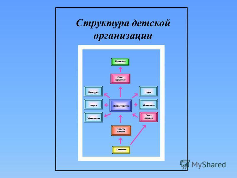 Структура детской организации