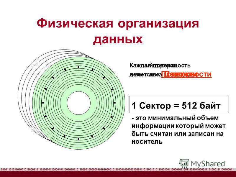 Физическая организация данных Каждый диск имеет две Поверхности Каждая поверхность делится на Дорожки Каждая дорожка делится на Секторы 1 Сектор = 512 байт - это минимальный объем информации который может быть считан или записан на носитель