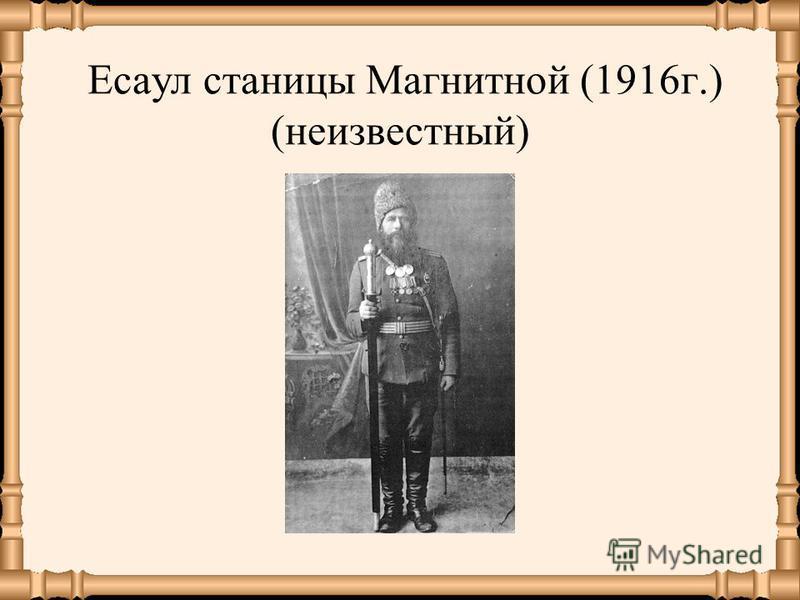 Есаул станицы Магнитной (1916 г.) (неизвестный)