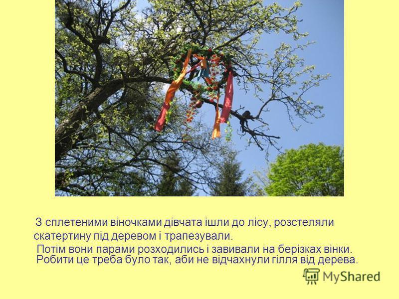 З сплетеними віночками дівчата ішли до лісу, розстеляли скатертину під деревом і трапезували. Потім вони парами розходились і завивали на берізках вінки. Робити це треба було так, аби не відчахнули гілля від дерева.