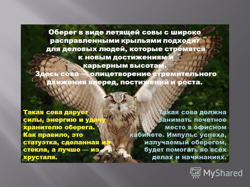 Оберег в виде летящей совы с широко расправленными крыльями подходит для деловых людей, которые стремятся к новым достижениям и карьерным высотам. Здесь сова олицетворение стремительного движения вперед, постижений и роста. Такая сова должна занимать