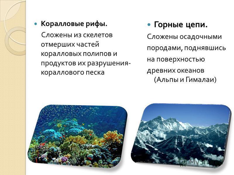 Коралловые рифы. Сложены из скелетов отмерших частей коралловых полипов и продуктов их разрушения - кораллового песка Горные цепи. Сложены осадочными породами, поднявшись на поверхностью древних океанов ( Альпы и Гималаи )