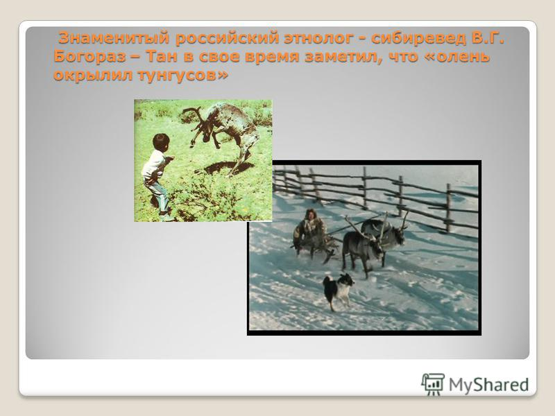 Знаменитый российский этнолог - сибиревед В.Г. Богораз – Тан в свое время заметил, что «олень окрылил тунгусов» Знаменитый российский этнолог - сибиревед В.Г. Богораз – Тан в свое время заметил, что «олень окрылил тунгусов»