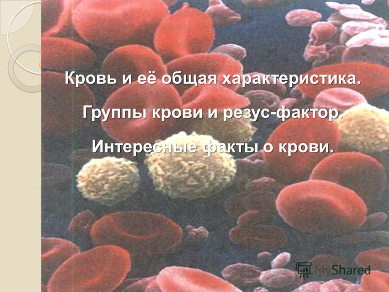 Кровь и её общая характеристика. Группы крови и резус-фактор. Интересные факты о крови.