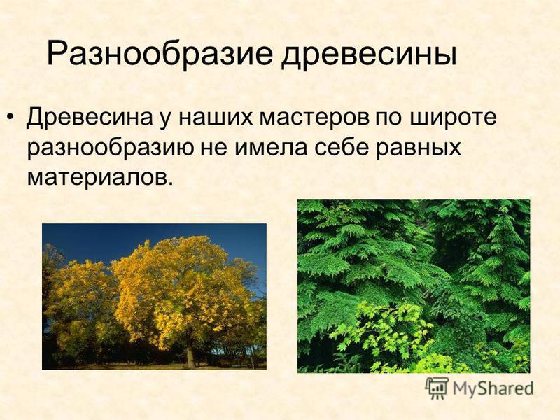 Разнообразие древесины Древесина у наших мастеров по широте разнообразию не имела себе равных материалов.