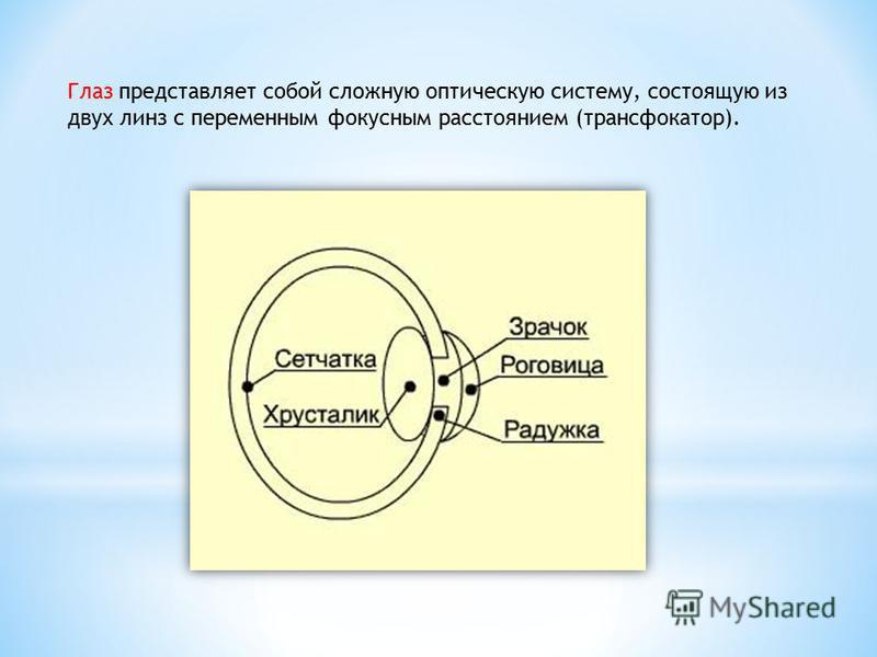 Глаз представляет собой сложную оптическую систему, состоящую из двух линз с переменным фокусным расстоянием (трансфокатор).