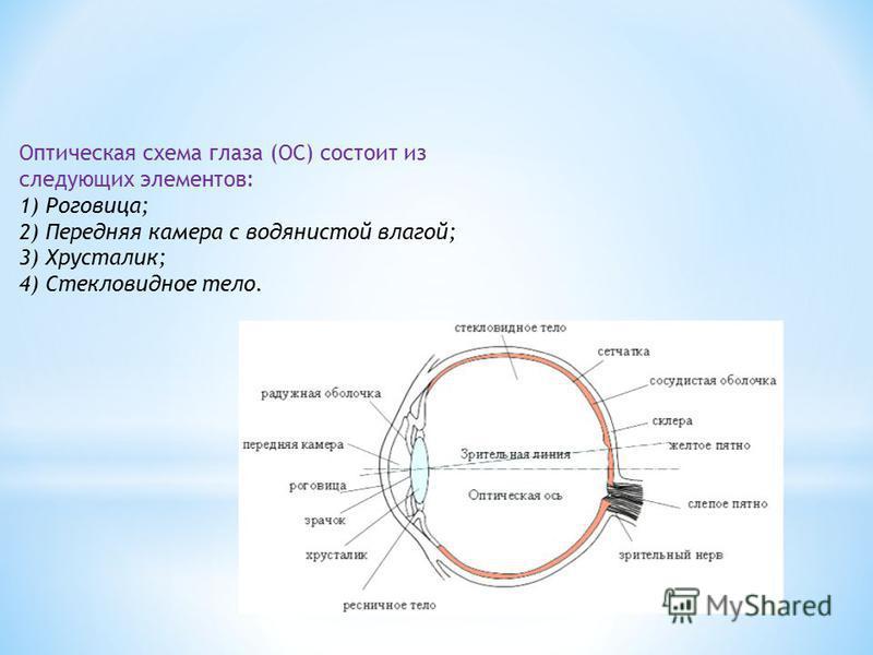 Оптическая схема глаза (ОС) состоит из следующих элементов: 1) Роговица; 2) Передняя камера с водянистой влагой; 3) Хрусталик; 4) Стекловидное тело.