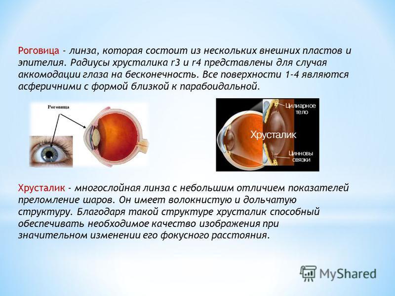 Роговица - линза, которая состоит из нескольких внешних пластов и эпителия. Радиусы хрусталика r3 и r4 представлены для случая аккомодации глаза на бесконечность. Все поверхности 1-4 являются асферичными с формой близкой к параноидальной. Хрусталик -