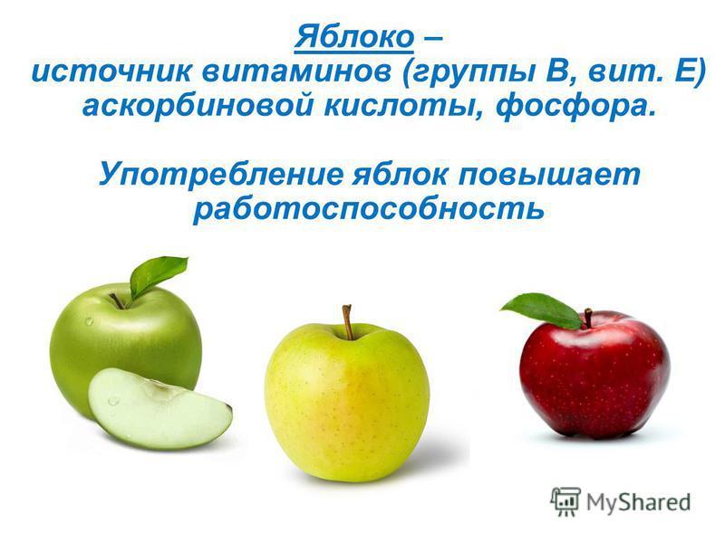 Яблоко – источник витаминов (группы В, вит. Е) аскорбиновой кислоты, фосфора. Употребление яблок повышает работоспособность