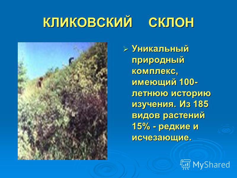 КЛИКОВСКИЙ СКЛОН Уникальный природный комплекс, имеющий 100- летнюю историю изучения. Из 185 видов растений 15% - редкие и исчезающие. Уникальный природный комплекс, имеющий 100- летнюю историю изучения. Из 185 видов растений 15% - редкие и исчезающи