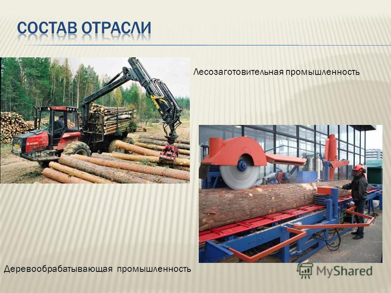 Лесозаготовительная промышленность Деревообрабатывающая промышленность