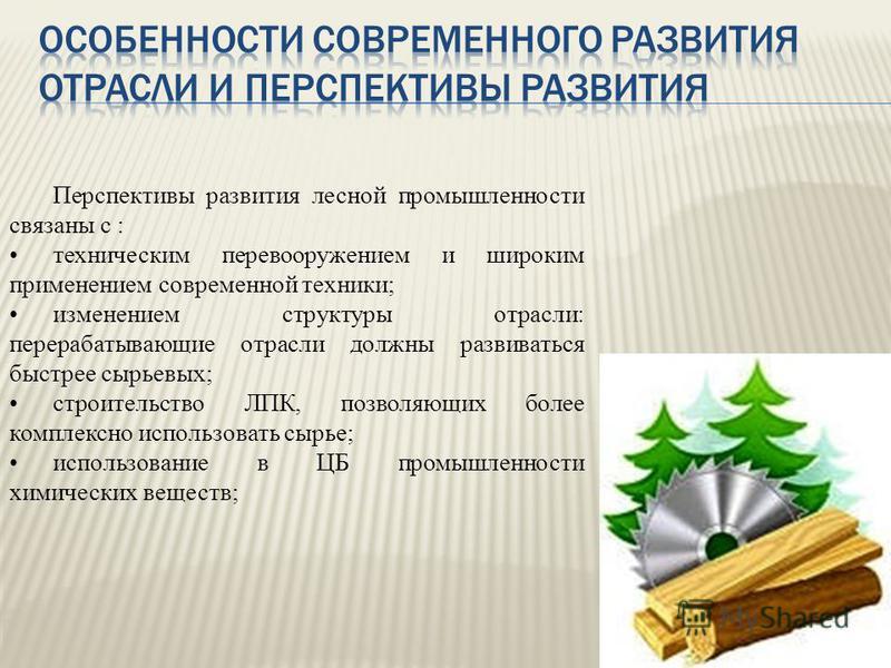 Перспективы развития лесной промышленности связаны с : техническим перевооружением и широким применением современной техники; изменением структуры отрасли: перерабатывающие отрасли должны развиваться быстрее сырьевых; строительство ЛПК, позволяющих б