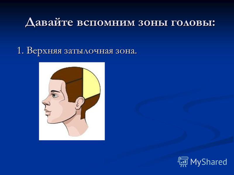 Давайте вспомним зоны головы: Давайте вспомним зоны головы: 1. Верхняя затылочная зона. 1. Верхняя затылочная зона.