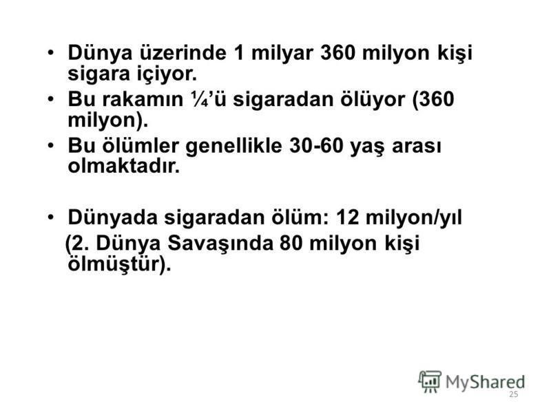 SİGARA 24