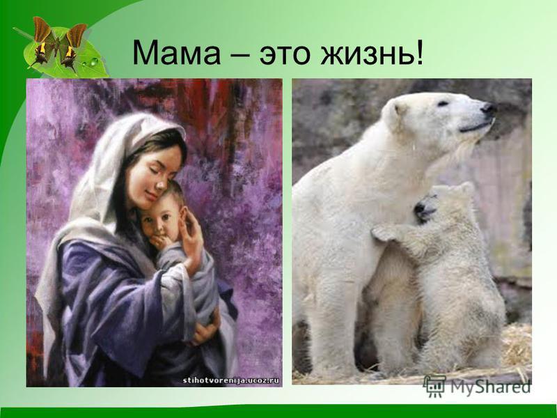 Мама – это жизнь!