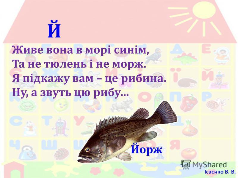 Й Живе вона в морі синім, Та не тюлень і не морж. Я підкажу вам – це рибина. Ну, а звуть цю рибу … Йорж Ісаєнко В. В.