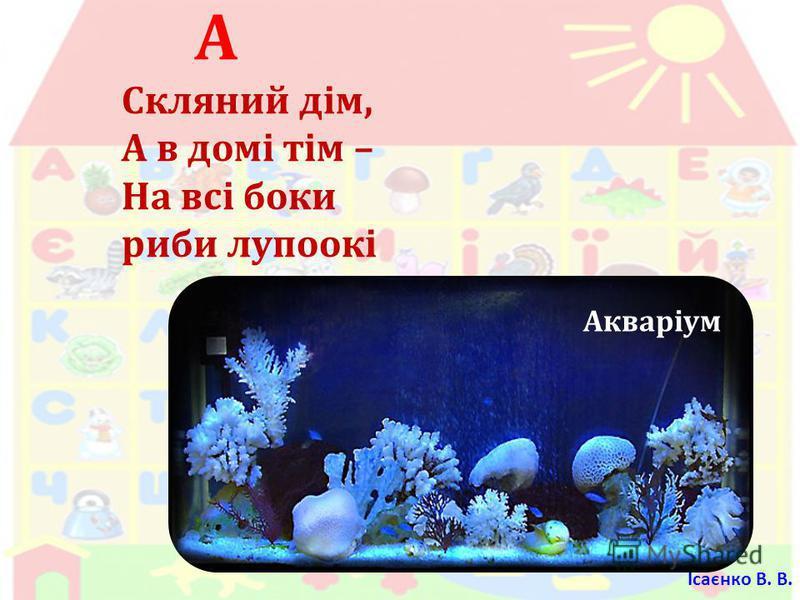 А Скляний дім, А в домі тім – На всі боки риби лупоокі Акваріум Ісаєнко В. В.