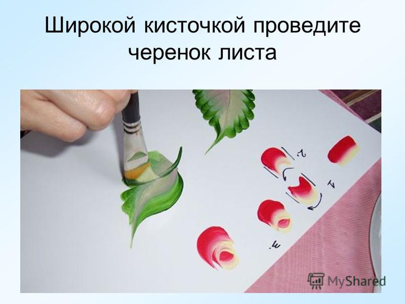 Широкой кисточкой проведите черенок листа