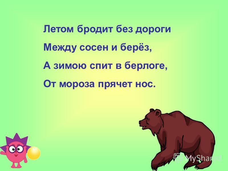 Летом бродит без дороги Между сосен и берёз, А зимою спит в берлоге, От мороза прячет нос.
