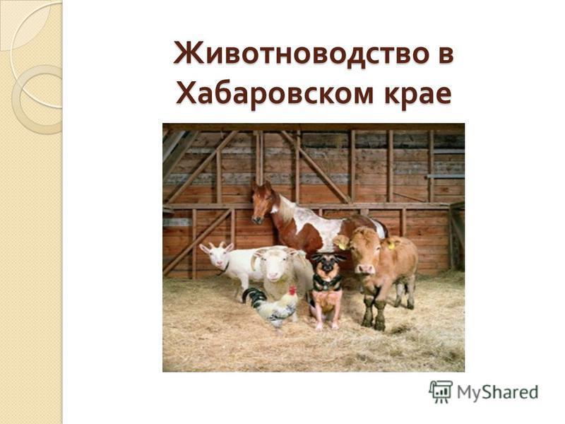Животноводство в Хабаровском крае