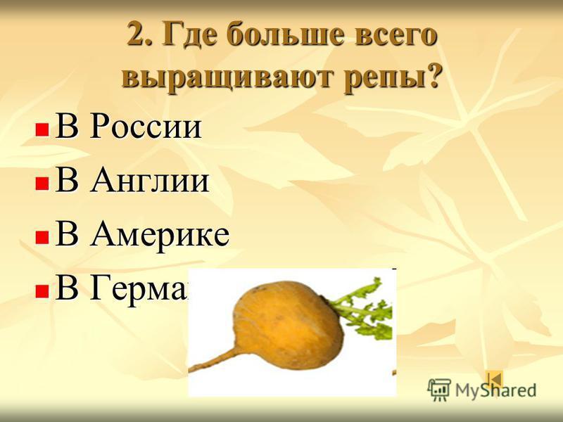 2. Где больше всего выращивают репы? В России В России В Англии В Англии В Америке В Америке В Германии В Германии