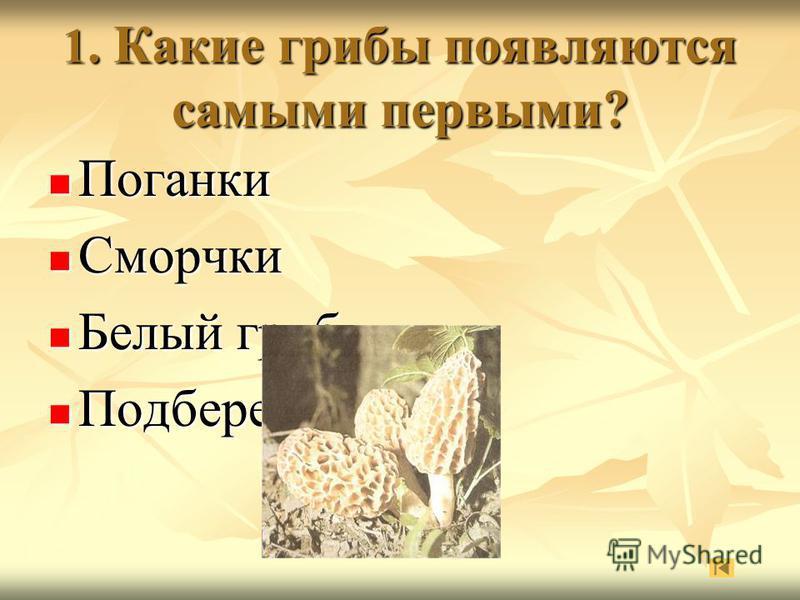 1. Какие грибы появляются самыми первыми? Поганки Поганки Сморчки Сморчки Белый гриб Белый гриб Подберезовики Подберезовики