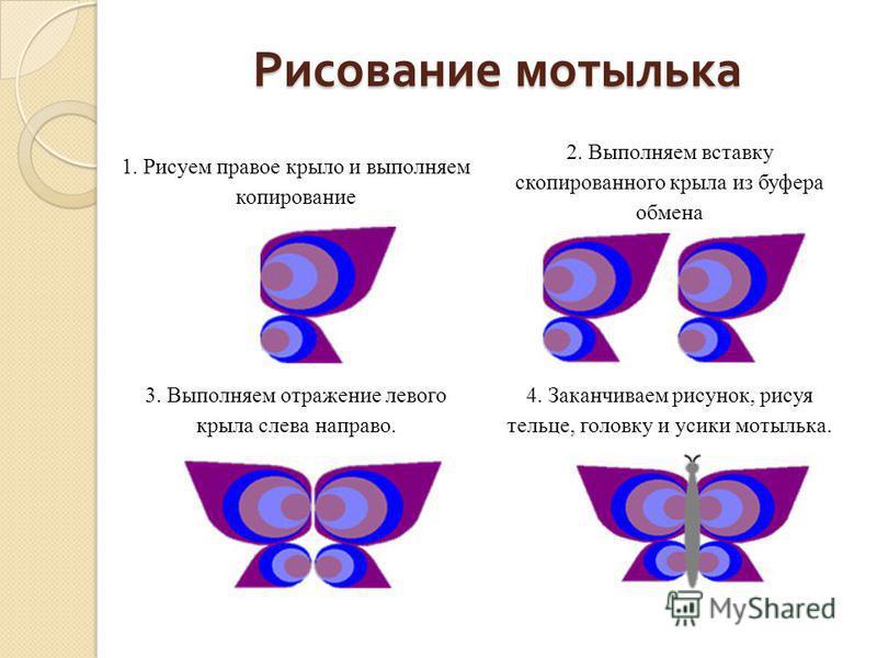 Рисование мотылька 1. Рисуем правое крыло и выполняем копирование 2. Выполняем вставку скопированного крыла из буфера обмена 3. Выполняем отражение левого крыла слева направо. 4. Заканчиваем рисунок, рисуя тельце, головку и усики мотылька.