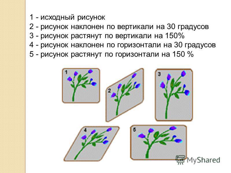 1 - исходный рисунок 2 - рисунок наклонен по вертикали на 30 градусов 3 - рисунок растянут по вертикали на 150% 4 - рисунок наклонен по горизонтали на 30 градусов 5 - рисунок растянут по горизонтали на 150 %