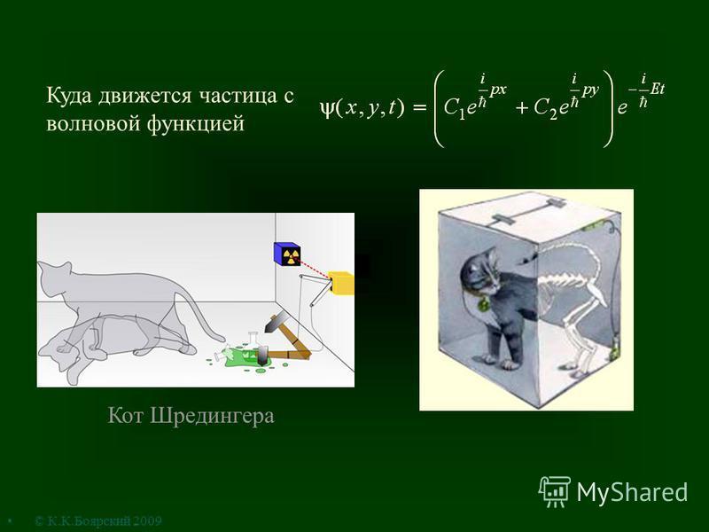 Куда движется частица с волновой функцией Кот Шредингера © К.К.Боярский 2009