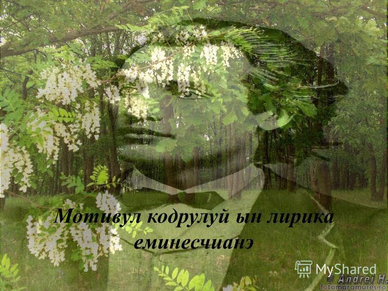 Мотивул кодрулуй ын лирика еминесчианэ