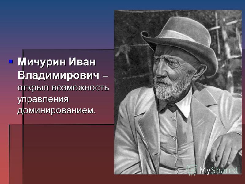 Мичурин Иван Владимирович – открыл возможность управления доминированием. Мичурин Иван Владимирович – открыл возможность управления доминированием.
