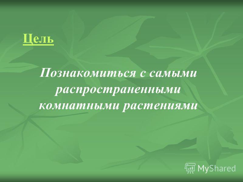 Познакомиться с самыми распространенными комнатными растениями Цель