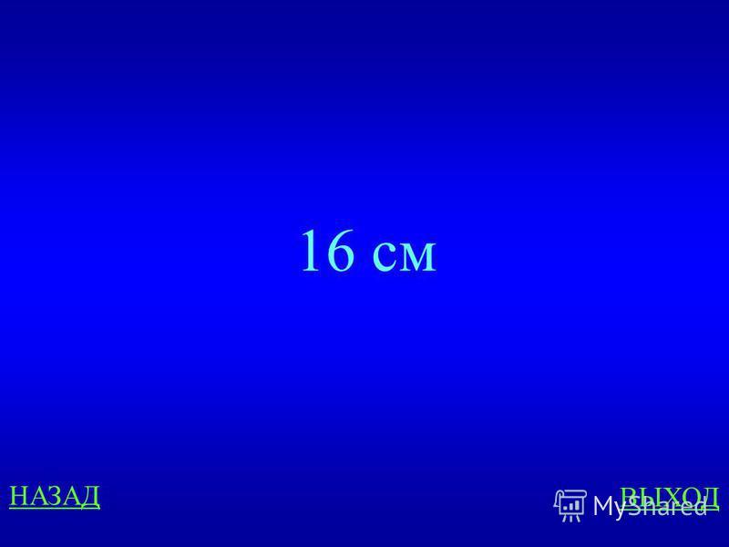 300 ответ Длина прямоугольника 6 см, а ширина в 3 раза короче. Чему равна сумма длин сторон прямоугольника?