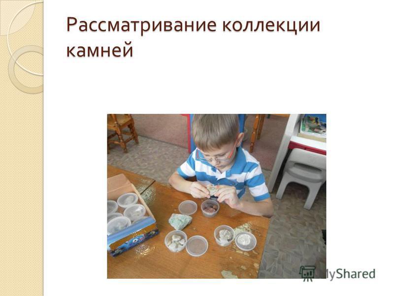 Рассматривание коллекции камней