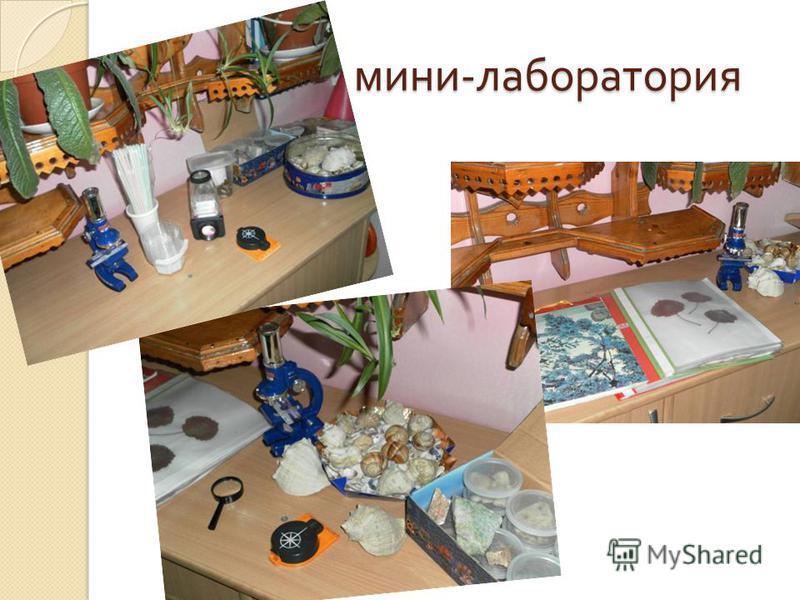 мини - лаборатория мини - лаборатория