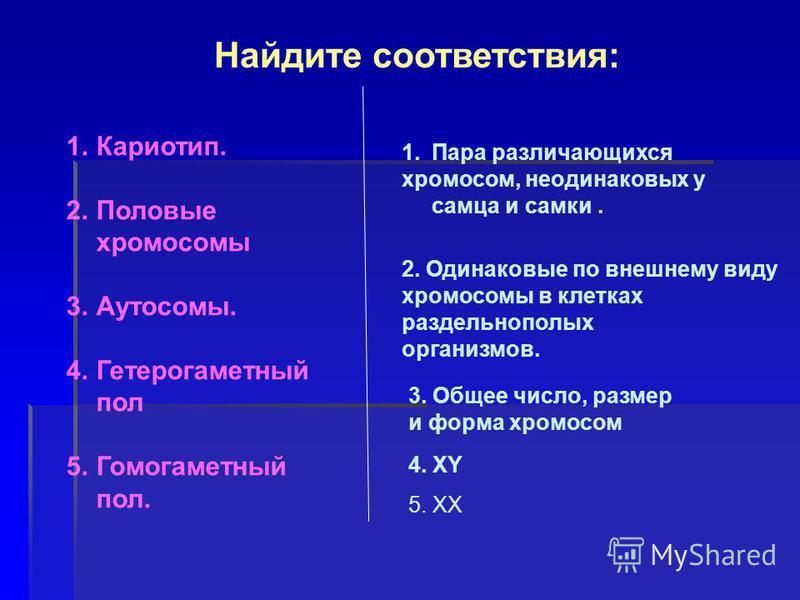 Найдите соответствия: 1.Кариотип. 2. Половые хромосомы 3.Аутосомы. 4. Гетерогаметный пол 5. Гомогаметный пол. 1. Пара различающихся хромосом, неодинаковых у самца и самки. 2. Одинаковые по внешнему виду хромосомы в клетках раздельнополых организмов.