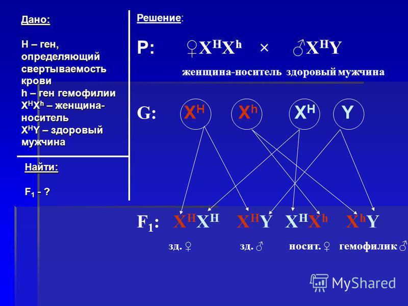 Дано: Н – ген, определяющий свертываемость крови h – ген гемофилии X H X h – женщина- носитель X H Y – здоровый мужчина Найти: F 1 - ? Решение: P:X H X h × X H Y женщина-носитель здоровый мужчина G: X H X h X H Y F 1 : X H X H X H Y X H X h X h Y зд.