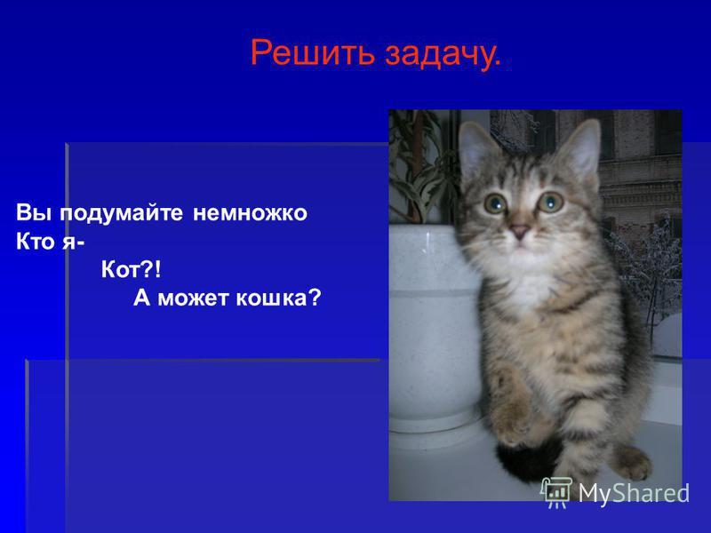 Вы подумайте немножко Кто я- Кот?! А может кошка? Решить задачу.