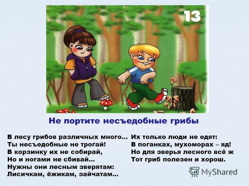 Не портите несъедобные грибы В лесу грибов различных много… Ты несъедобные не трогай! В корзинку их не собирай, Но и ногами не сбивай… Нужны они лесным зверятам: Лисичкам, ёжикам, зайчатам… Их только люди не едят: В поганках, мухоморах – яд! Но для з