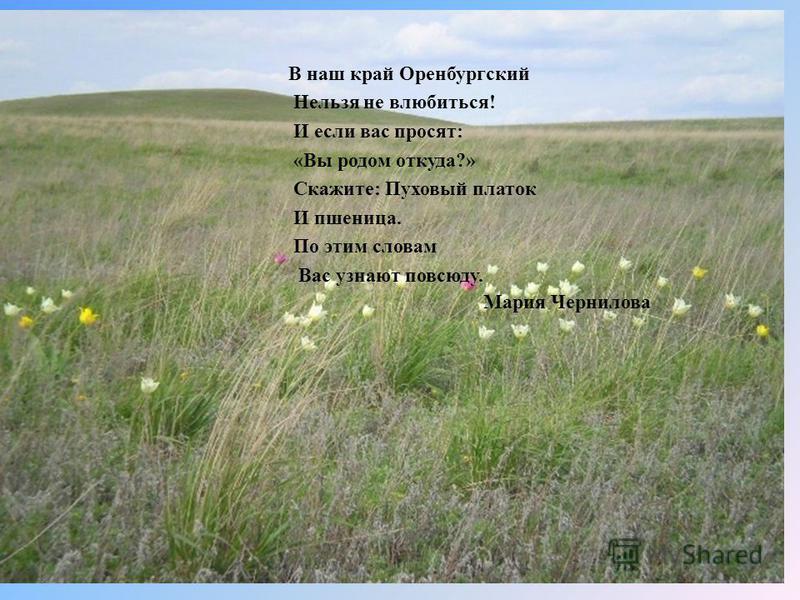 В наш край Оренбургский Нельзя не влюбиться! И если вас просят: «Вы родом откуда?» Скажите: Пуховый платок И пшеница. По этим словам Вас узнают повсюду. Мария Чернилова