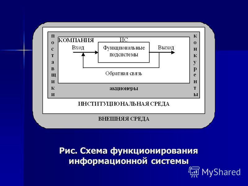 Рис. Схема функционирования информационной системы