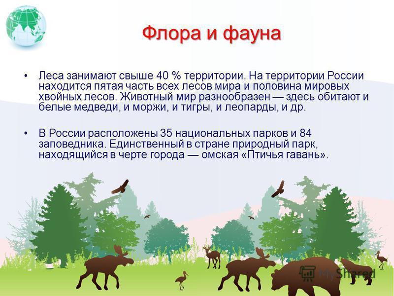 Флора и фауна Леса занимают свыше 40 % территории. На территории России находится пятая часть всех лесов мира и половина мировых хвойных лесов. Животный мир разнообразен здесь обитают и белые медведи, и моржи, и тигры, и леопарды, и др. В России расп