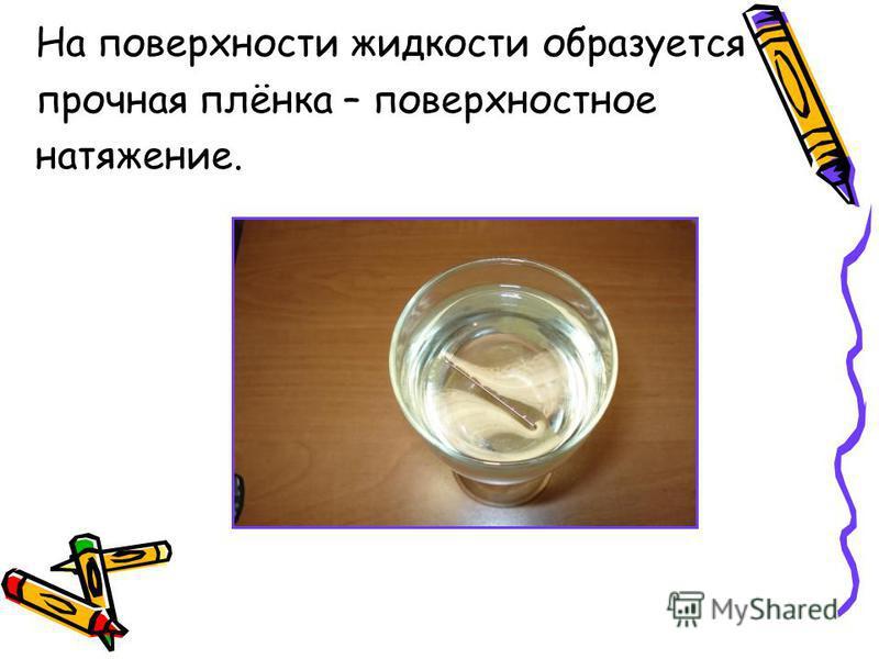 На поверхности жидкости образуется прочная плёнка – поверхностное натяжение.