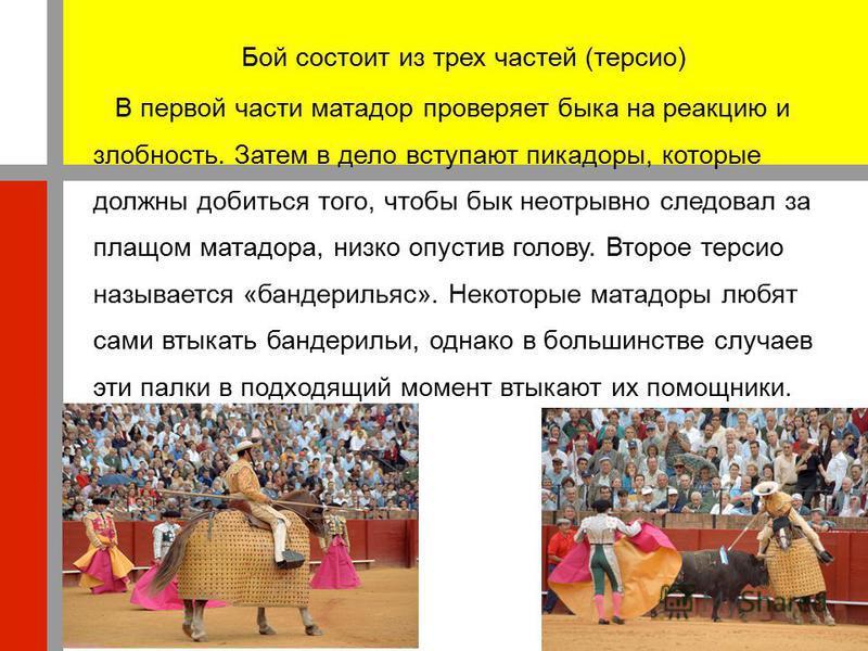 Бой состоит из трех частей (терсио) В первой части матадор проверяет быка на реакцию и злобность. Затем в дело вступают пикадоры, которые должны добиться того, чтобы бык неотрывно следовал за плащом матадора, низко опустив голову. Второе терсио назыв