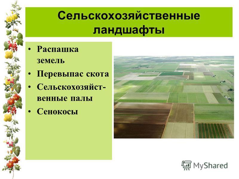 Сельскохозяйственные ландшавты Распашка земель Перевыпас скота Сельскохозяйст- венные палы Сенокосы